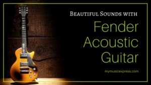 Beautiful Sounds with Fender Acoustic Guitar 1