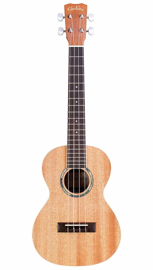 Comprehensive Overview of Best Ukulele brands For Musicians of All Age 8