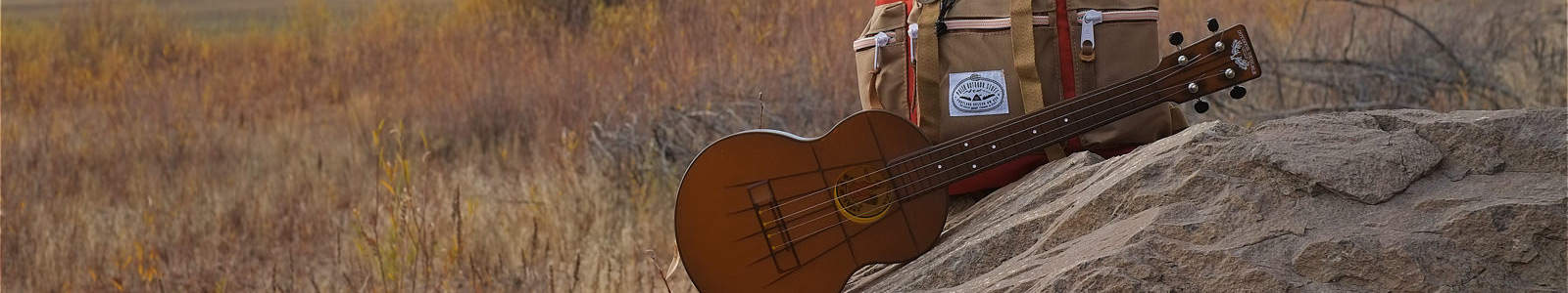 Comprehensive Overview of Best Ukulele brands For Musicians of All Age 1