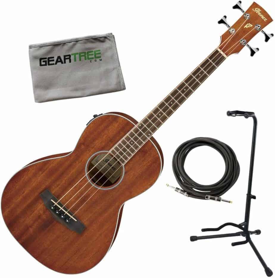 Ibanez PNB14E Parlor Acoustic Guitar
