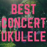 The Best Concert Ukulele