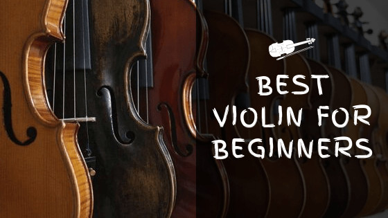 Best Violin for Beginners