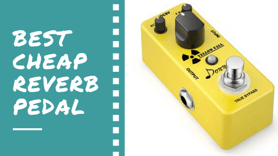 best cheap reverb pedal
