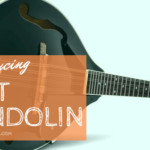 5 best mandolin that can be purchased online
