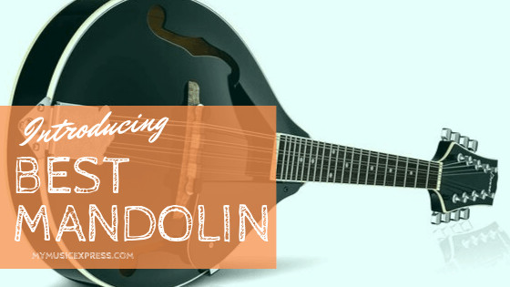 best mandolin