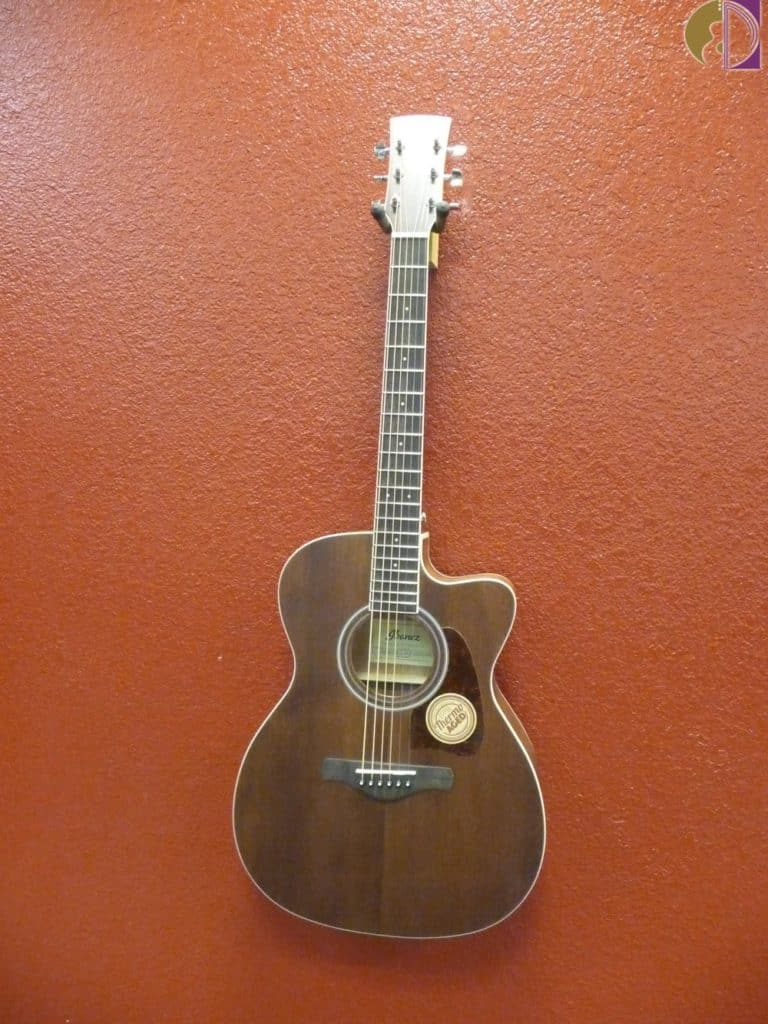 Ibanez Artwood AC340CE- Open Pore Natural