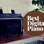5 Best Digital Piano