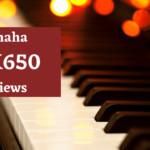 Yamaha dgx650 reviews- A go-ahead to the best