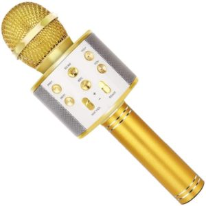 SUNY Wireless Bluetooth Karaoke