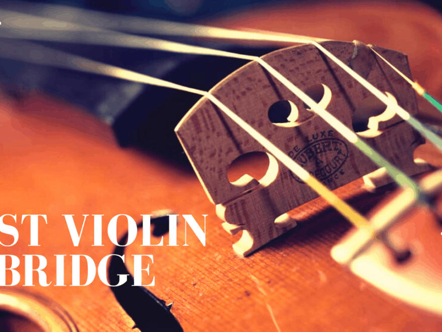 Best Violin Bridge