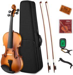 Eastar Wood Violin