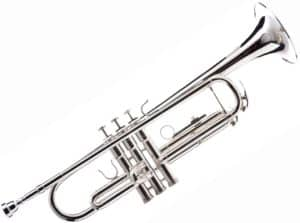 Hawk WD-T313 Bb Trumpet